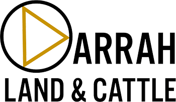 Darrah Land and Cattle logo